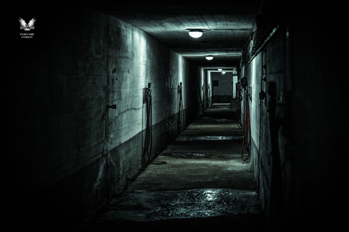 Empty dark tunnel. Long corridor